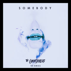 Somebody (Remixes) - The Chainsmokers, Drew Love