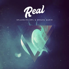 Real (Single) - SplashLife Owl