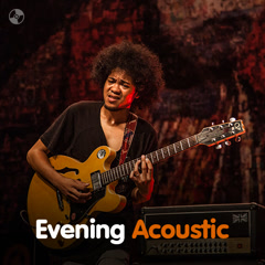 Evening Acoustic - Various Artists