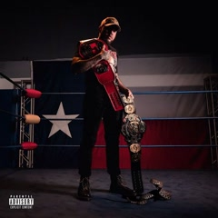Texas Rattlesnake - LE$