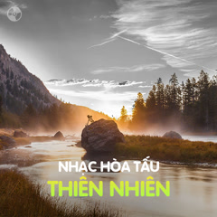Album Nhạc Hòa Tấu Thiên Nhiên - Various Artists