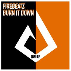 Burn It Down (Single) - Firebeatz