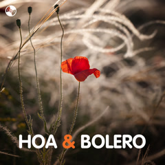 Hoa & Bolero - Various Artists