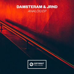 Analog (Single) - DAMSTERAM, JRND