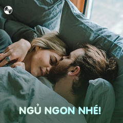 Ngủ Ngon Nhé! - Various Artists