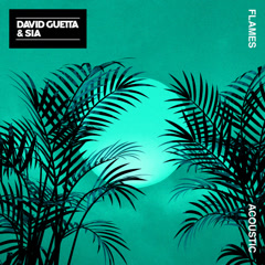 Flames (Acoustic) - David Guetta, Sia