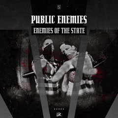 Enemies Of The State (Single) - Public Enemies