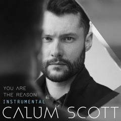You Are the Reason (Instrumental) - Calum Scott