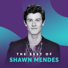 Những Bài Hát Hay Nhất Của Shawn Mendes