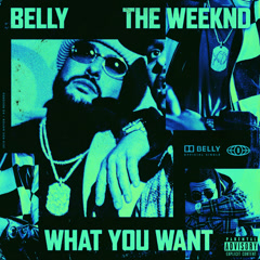 What You Want  (Single) - Belly