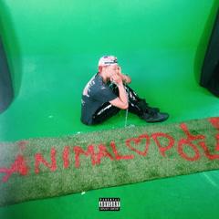 Animal (Single) - Pollari
