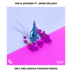 Only One (Joshua Francois Remix) - Vmk, Arcando