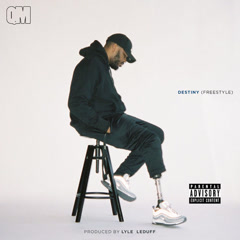 Destiny (Freestyle) (Single) - Quentin Miller