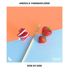 Side By Side (Single) - Ameria, YungSnapLorde