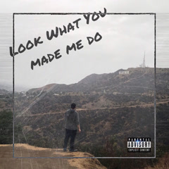 Look What You Made Me Do (Single)