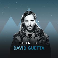 Những Bài Hát Hay Nhất Của David Guetta - David Guetta