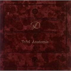 Tafel Anatomie