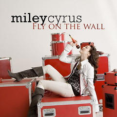 Fly On The Wall - Single