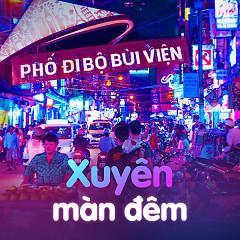 Xuyên Màn Đêm - Various Artists