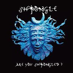 Are You Shpongled - Shpongle