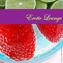 Erotic Lounge Vol.3 - Sensual Passion CD2