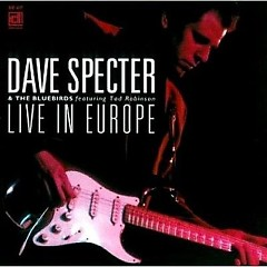 Dave Specter & The Bluebirds - Live In Europe - Dave Specter