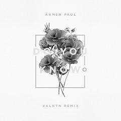 Do You Know (Valntn Remix) (Single) - Armen Paul