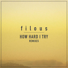 How Hard I Try (Remixes) - Filous,James Hersey