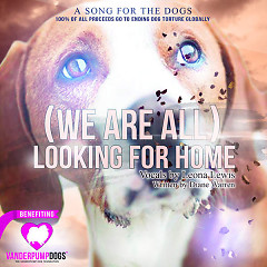 (We Are All) Looking For Home (Single) - Leona Lewis,Diane Warren