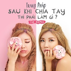 Sau Khi Chia Tay Thì Phải Làm Gì (Remix Single)
