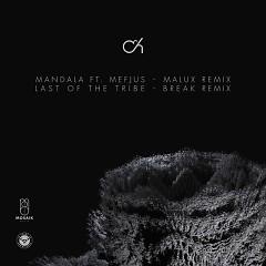 Mandala (Malux Remix) - Camo & Krooked, Mefjus