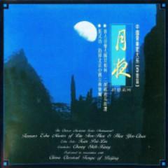 A Wonderful Moon-Night