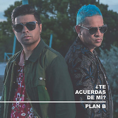 ¿Te Acuerdas De Mi ? (Single) - Plan B