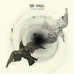 Distance Inbetween - The Coral