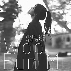 It Seems Like Love Never Again (Single) - Woo Eun Mi