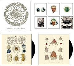 The Evolutionary Set - Explorarians - Medeski Martin & Wood