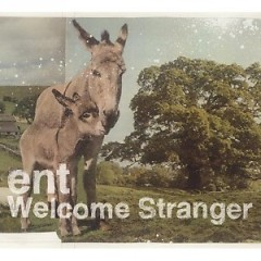 Welcome Stranger - ent
