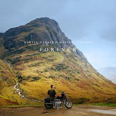 Forever (Single) - Martin Garrix, Matisse & Sadko