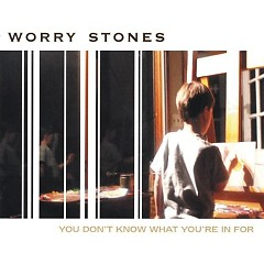 You Don't Know What You're In For - Worry Stones