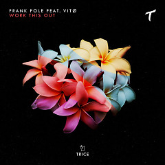 Work This Out (Single) - Frank Pole