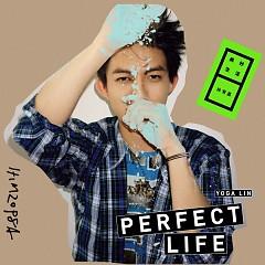 美妙生活/ Perfect Life (CD4)