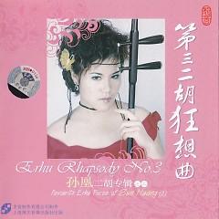 第三二胡狂想曲/ Erhu Rhapsody No.3