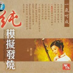 二胡-一气呵成/ One Go - Huang Jiang Qin