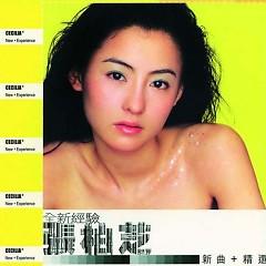 全新经验/ Quan Xin Jing Yan (CD2)