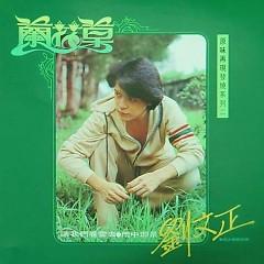 兰花草/ Cỏ Hoa Lan (CD2)
