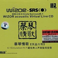 情歌 天品六号/ Tsai Chin-Day Product Love Song