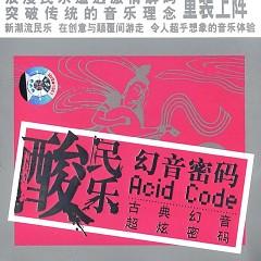 幻音密码(酸民乐)/ Acid Code