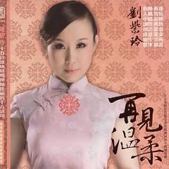 再见温柔/ Tạm Biệt Sự Dịu Dàng (CD2)