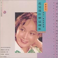 花儿为什么这样红/ Why So Red The Flowers (CD1)