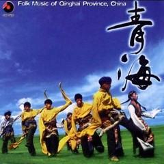 青海(轻曲妙韵8)/ Thanh Hải (Nhạc Nhẹ Âm Thanh Đẹp 8)